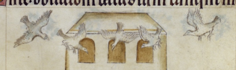 Alcuinundrums.pigeons