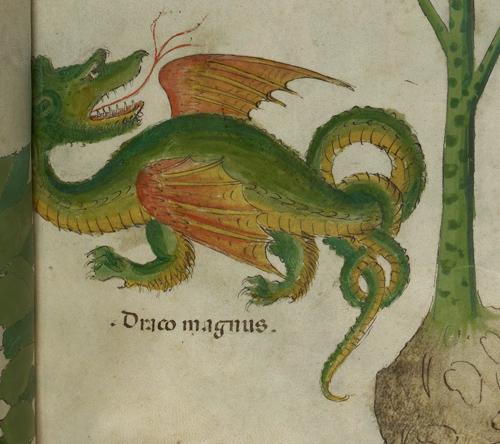 blog-bacon1-dragon