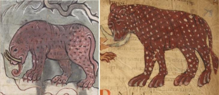 TPBlog.Elephants2