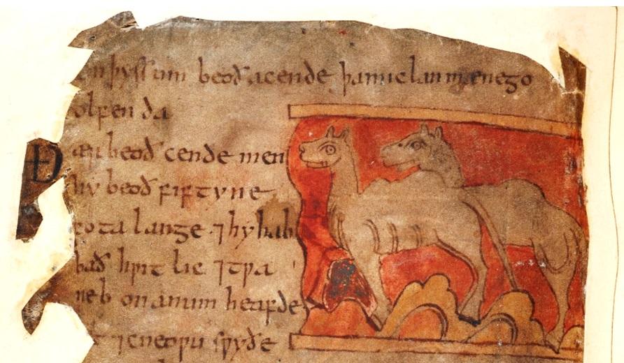 TPBlog.Elephants6
